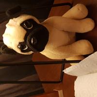 Filippashundvaktning